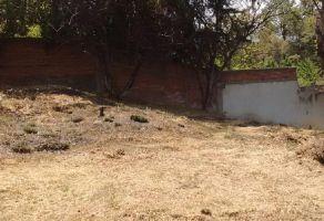 Foto de terreno habitacional en venta en Santa Rita Tlahuapan, Tlahuapan, Puebla, 19714041,  no 01