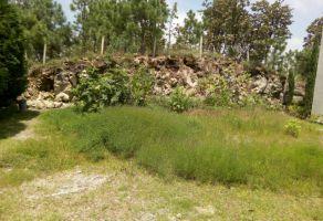 Foto de terreno habitacional en venta en El Palomar, Tlajomulco de Zúñiga, Jalisco, 5102765,  no 01