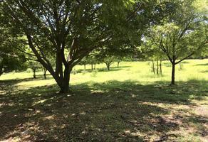 Foto de terreno habitacional en venta en 3 2, real del puente, xochitepec, morelos, 8923448 No. 01