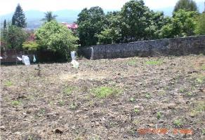 Foto de terreno habitacional en venta en  , 3 de mayo, emiliano zapata, morelos, 9333051 No. 01
