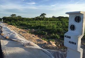 Foto de terreno industrial en venta en 3 , dzitya, mérida, yucatán, 8451249 No. 01