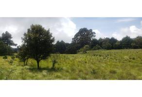 Foto de terreno habitacional en venta en  , 3 marías o 3 cumbres, huitzilac, morelos, 18105318 No. 01