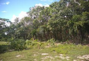 Foto de terreno comercial en venta en 307 , playa del carmen, solidaridad, quintana roo, 17262211 No. 01