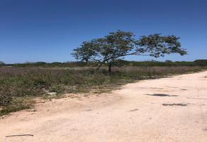 Foto de terreno habitacional en venta en 31 a , ciudad caucel, mérida, yucatán, 0 No. 01
