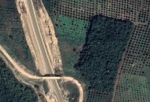 Foto de terreno habitacional en venta en Chijolar, Tuxpan, Veracruz de Ignacio de la Llave, 16785600,  no 01