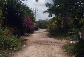 Foto de terreno habitacional en venta en México, Benito Juárez, Quintana Roo, 6871653,  no 01