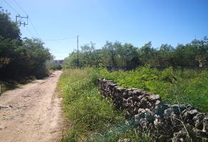 Foto de terreno industrial en venta en 32 , francisco de montejo, mérida, yucatán, 10565685 No. 01