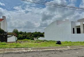 Foto de terreno habitacional en venta en 324 234234, lomas de cocoyoc, atlatlahucan, morelos, 16880996 No. 02