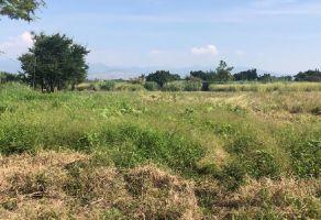 Foto de terreno habitacional en venta en Casasano, Cuautla, Morelos, 11191102,  no 01
