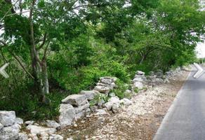 Foto de terreno comercial en venta en 34 , dzibilchaltún, mérida, yucatán, 18586557 No. 01