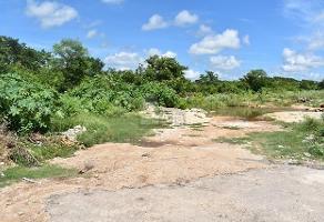 Foto de terreno habitacional en venta en 35 , conkal, conkal, yucatán, 0 No. 01