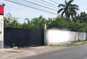 Foto de terreno comercial en venta en 35 , san juan grande, mérida, yucatán, 18586182 No. 01