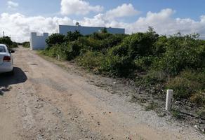Foto de terreno habitacional en venta en 36-a 123, chicxulub puerto, progreso, yucatán, 0 No. 01