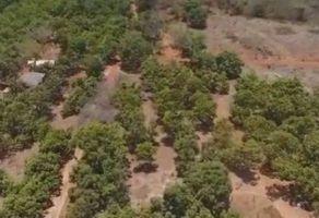Foto de terreno habitacional en venta en Aserradero, San Blas, Nayarit, 21342601,  no 01