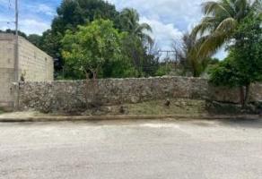 Foto de terreno habitacional en venta en 37 , chichi suárez, mérida, yucatán, 0 No. 01