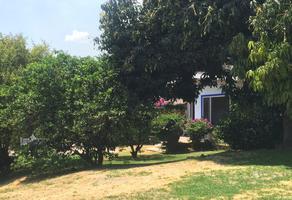 Foto de terreno habitacional en venta en 3a. privada de los reyes , real de tetela, cuernavaca, morelos, 11424736 No. 01