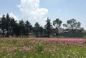 Foto de terreno industrial en venta en La Cañada, Toluca, México, 8907458,  no 01