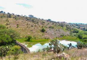 Foto de terreno habitacional en venta en La Cieneguita, San Miguel de Allende, Guanajuato, 20742548,  no 01
