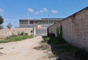 Foto de terreno habitacional en venta en Obrera, Mérida, Yucatán, 11525011,  no 01