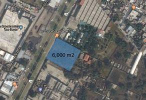 Foto de terreno comercial en venta en Profr. Carlos Hank González, La Paz, México, 20807963,  no 01