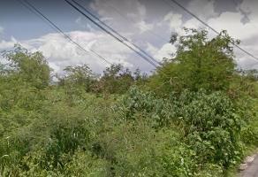 Foto de terreno industrial en venta en 4 66, temozon norte, mérida, yucatán, 6528748 No. 01