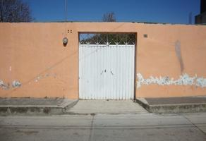 Foto de terreno habitacional en venta en 4 oriente , sesma, chalchicomula de sesma, puebla, 15551372 No. 01