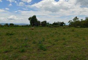 Foto de terreno habitacional en venta en Axocopan, Atlixco, Puebla, 22202655,  no 01