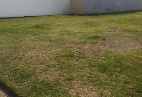 Foto de terreno habitacional en venta en Lomas de Angelópolis II, San Andrés Cholula, Puebla, 15940331,  no 01