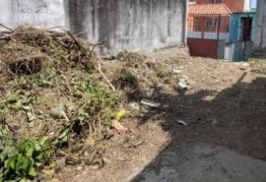 Foto de terreno habitacional en venta en Campo Viejo, Coatepec, Veracruz de Ignacio de la Llave, 19986023,  no 01
