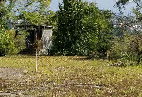 Foto de terreno habitacional en venta en Las Quintas, Córdoba, Veracruz de Ignacio de la Llave, 17252251,  no 01