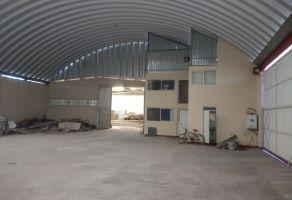 Foto de bodega en venta y renta en San Pablo Autopan, Toluca, México, 5924523,  no 01