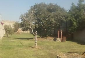 Foto de terreno habitacional en venta en 45598 , la romita, san pedro tlaquepaque, jalisco, 5439008 No. 01