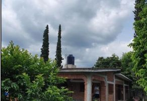 Foto de casa en venta en Apanquetzalco, Yautepec, Morelos, 19661871,  no 01