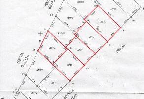 Foto de terreno habitacional en venta en De Lexio, Villa de Zaachila, Oaxaca, 14822050,  no 01