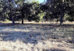 Foto de terreno habitacional en venta en Cuauhtémoc, Saltillo, Coahuila de Zaragoza, 9919642,  no 01