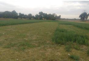 Foto de terreno comercial en venta en Puebla (Hermanos Serdán), Huejotzingo, Puebla, 7079715,  no 01