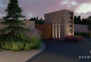 Foto de terreno habitacional en venta en San Isidro de las Palomas, Arteaga, Coahuila de Zaragoza, 14999711,  no 01