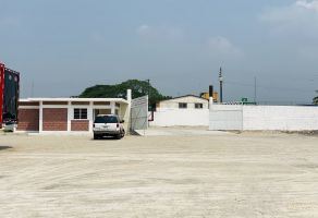 Foto de terreno comercial en renta en Rancho Trejo, Córdoba, Veracruz de Ignacio de la Llave, 16724042,  no 01