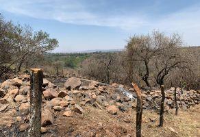 Foto de terreno habitacional en venta en Los Laureles, El Salto, Jalisco, 15139065,  no 01