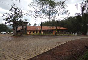 Foto de terreno habitacional en venta en Arcos de la Cruz, Tlajomulco de Zúñiga, Jalisco, 21238903,  no 01