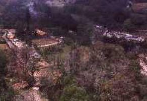 Foto de terreno habitacional en venta en Apulco, Zacapoaxtla, Puebla, 9479388,  no 01