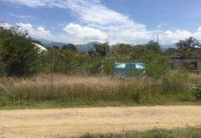 Foto de terreno habitacional en venta en Santa Maria Del Tule, Santa María del Tule, Oaxaca, 22283341,  no 01