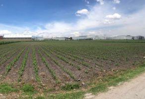 Foto de terreno industrial en venta y renta en San Blas Otzacatipan, Toluca, México, 21342586,  no 01