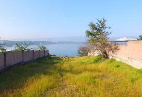 Foto de terreno habitacional en venta en San José Vista Hermosa, Puente de Ixtla, Morelos, 5808545,  no 01