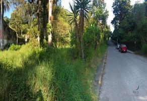 Foto de terreno habitacional en venta en 4ta de 16 de septiembre , coatepec centro, coatepec, veracruz de ignacio de la llave, 0 No. 01