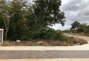 Foto de terreno habitacional en venta en 5 , chablekal, mérida, yucatán, 0 No. 01