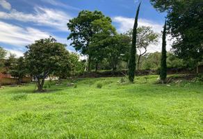 Foto de terreno habitacional en venta en 5 de febrero , san agustin etla, san agustín etla, oaxaca, 0 No. 01