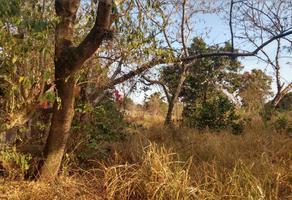 Foto de terreno habitacional en venta en 5 de mayo 1, santiago, yautepec, morelos, 12969625 No. 01