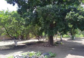 Foto de terreno habitacional en venta en 5 de mayo 123, itzamatitlán, yautepec, morelos, 0 No. 01