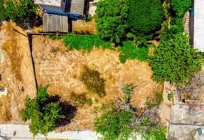 Foto de terreno habitacional en venta en 5 de mayo 16, flamingos, tepic, nayarit, 0 No. 01